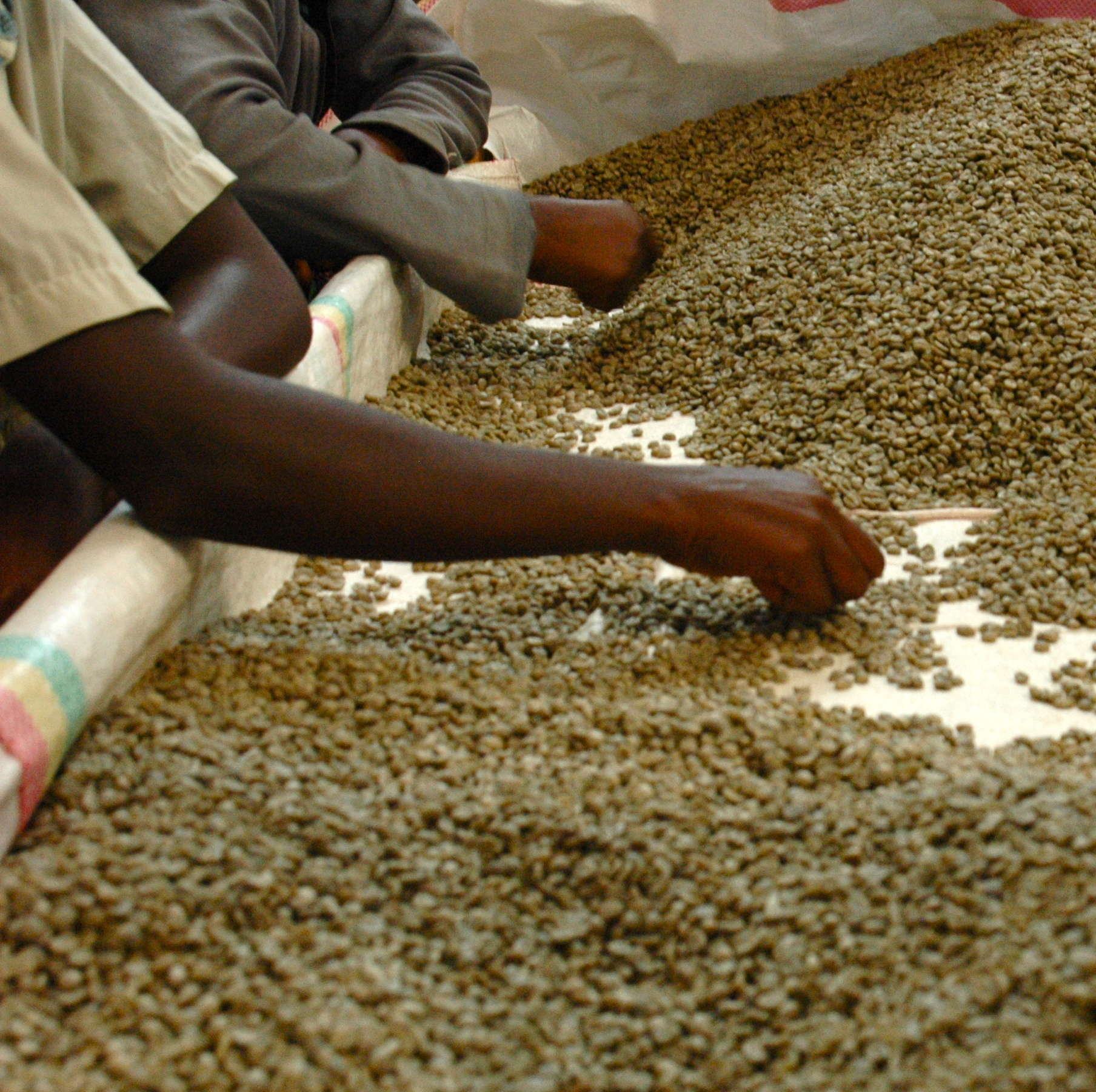 The first round of LINK focuses on Rwandan coffee